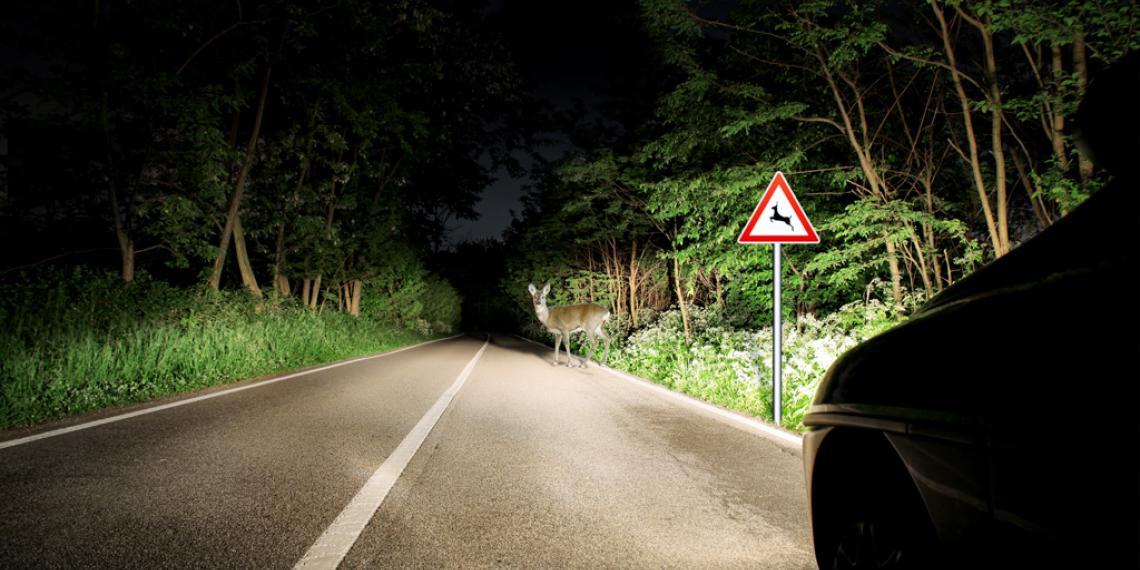 Новая топовая серия автомобильных ламп Bosch